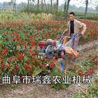 rxjx-100手扶水稻黄豆割晒机 多功能收割机