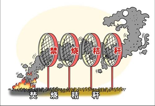安庆市下发《安庆市秸秆禁烧和综合利用督查巡查工作方案》