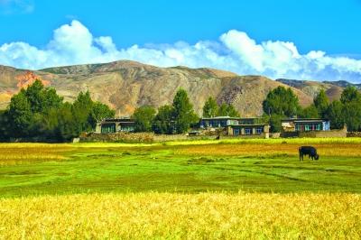 青藏高原 雪域或可变粮仓