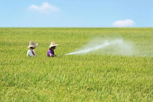解读农药登记八项新规