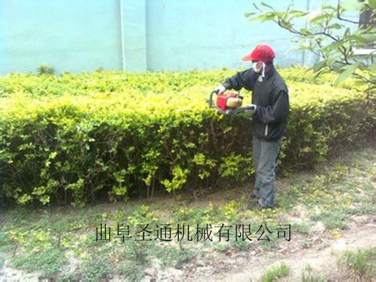 达州茶园灌木修剪绿篱机