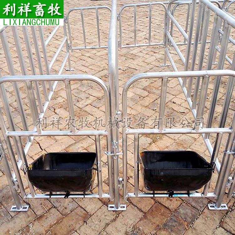 母猪定位栏 猪场工人帮手 二保焊工艺焊接限位栏