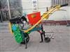 玉米精密播种机 汽油玉米施肥播种机