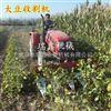 大豆辣椒割晒机 薄荷药材收割机 新型小麦收割机